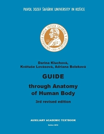Guide through Anatomy of Human Body